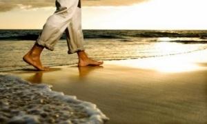 meditar-camimando